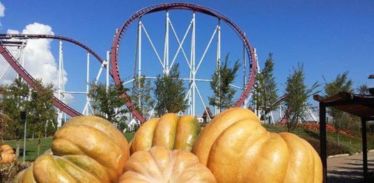 Halloween a Magicland - Quantomanca.com