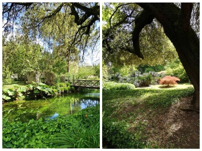 Sermoneta ed il giardino di ninfa nel lazio - Angoli di giardino ...