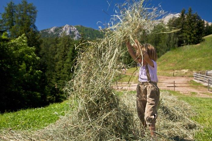 Agriturismo Weiss, Vigo di Fassa