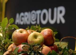 Agri &Tour Salone nazionale dell' agriturismo arezzo