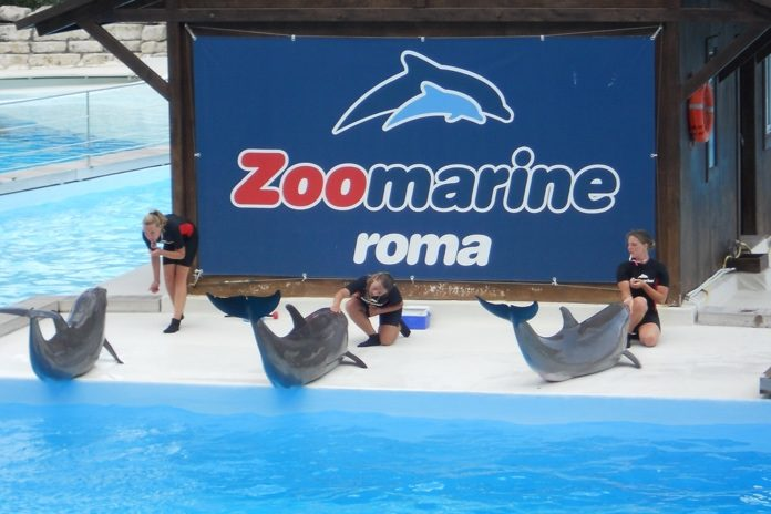 parco zoomarine