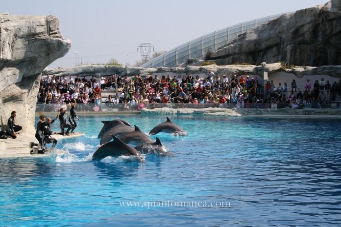 Parchi di divertimento in Emilia Romagna per bambini - Quantomanca.com 179867d3303
