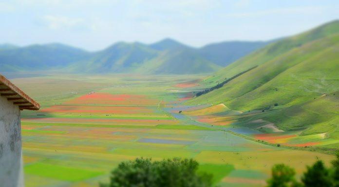 Il viaggio con tutta la famiglia che porta a Castelluccio di Norcia durante la fioritura delle lenticchie