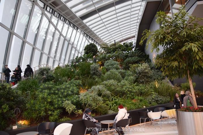 skygarden-piante
