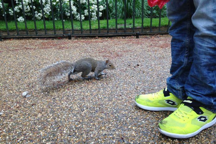 Hide Park Londra