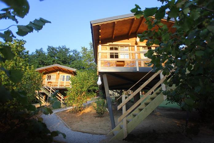 hotel a tena casa sugli alberi