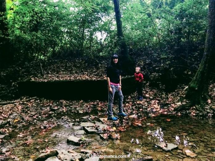 escursioni con bambini lombardia
