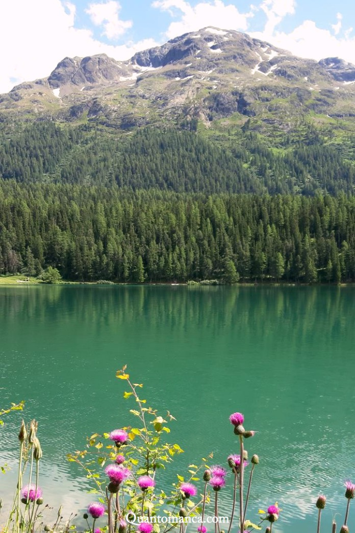 lago di st moritz