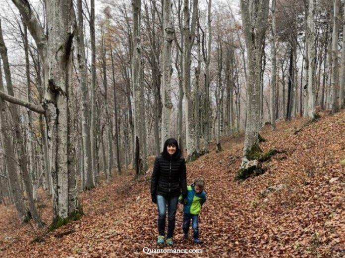 escursione piani resinelli